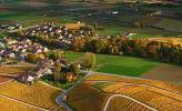 Photo : Suisse, canton de Vaud, vignoble de La Côte - Fechy et le Lac Léman